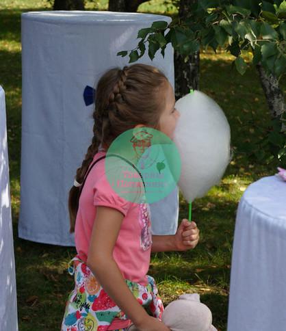 Сладкая сахарная вата на детский праздник в Мсокве и Подмосковье