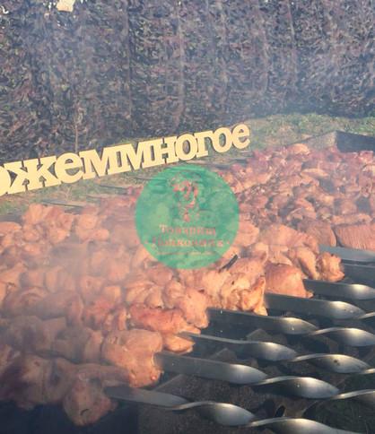 Выездной барбекю кейтеринг, пикник на прирлоде в Мсокве и Подмосковье